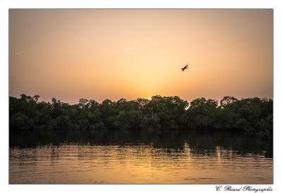 Coucher de soleil au Sénégal © Claire Ricard