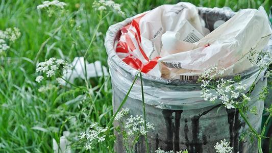 Photo d'une poubelle dans les champs